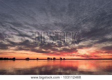 Lake Sunrise And Trees