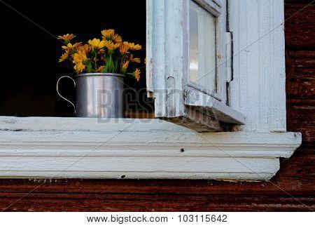 Yellow calendula in the white wooden window