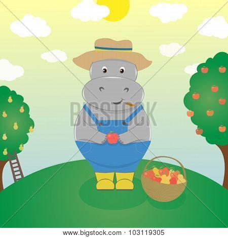 Hippo Farmer