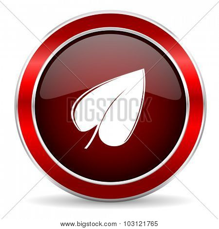 leaf red circle glossy web icon, round button with metallic border