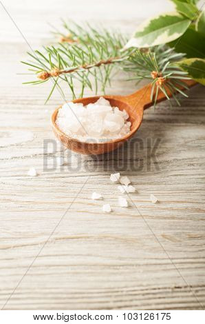 Salt In A Wooden Spoon