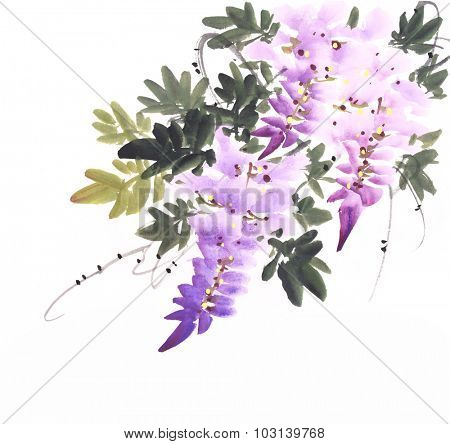 Chinese watercolor painting of wisteria