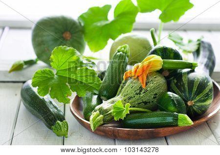 Organic Zsquash