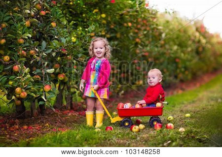 Kids Picking Apples From Tree