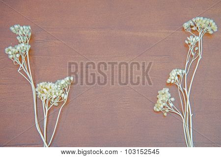 Wood Texture Background With Dried Flower Decoration