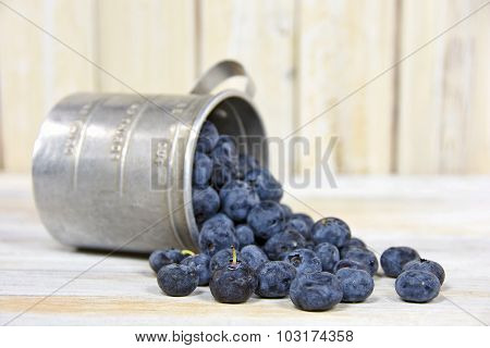 blueberries in retro tin cup