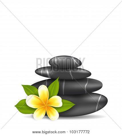 Frangipani Flower plumeria and Pyramid Zen Spa Stones, Isolat