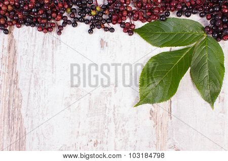 Autumn Fresh Elderberry With Leaf And Copy Space For Text On Old Wooden Background