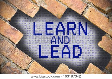 Hole In Brick Wall With Learn And Lead Word