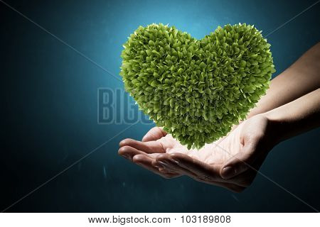 Green heart in human hands representing ecology concept