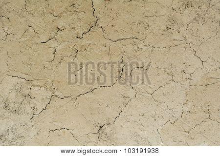 Cracked Dry Mud Texture