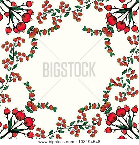 Rosehips red berry natural background