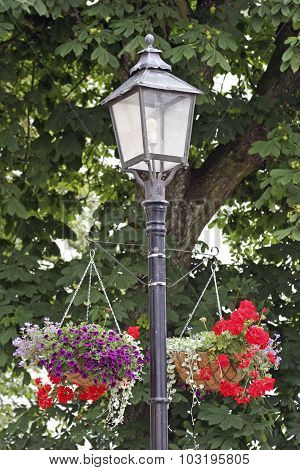 Street lamp-winning flowers - Trosa, Sweden