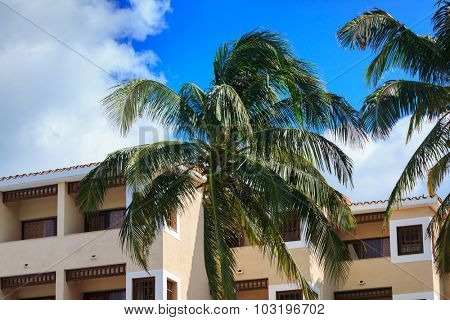 building and palm trees against the sky