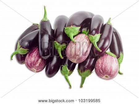 Pile Of A Eggplant On A Light Background