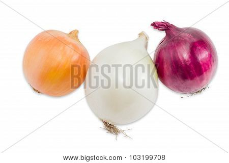 Three Different Bulbs Onion On A Light Background