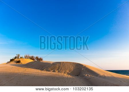 Sea dune sand landscape yellow coas background