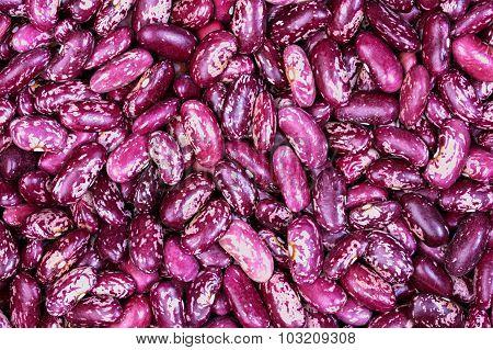 Beans Close-up