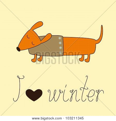 Winter Dachshund