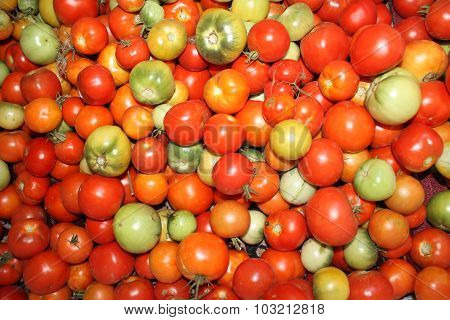 Tomatoes background