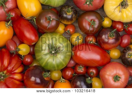 Collection of various tomatoes, top view