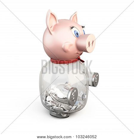 Pig Piggy Bank With Coins Isolated