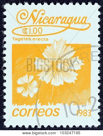 NICARAGUA - CIRCA 1983: A stamp printed in Nicaragua shows the Mexican marigold (Tagetes erecta)