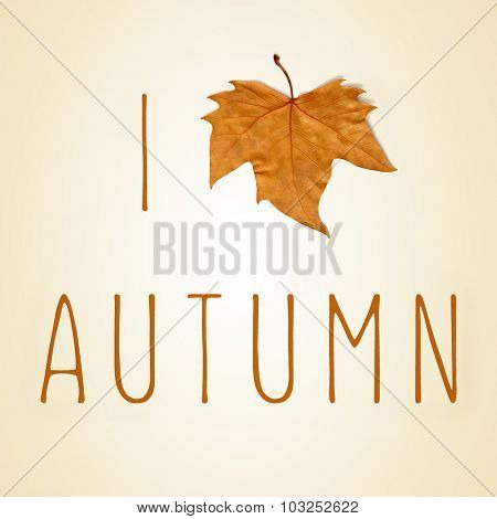 the sentence I love autumn with a dry leaf instead of a heart, on a beige background