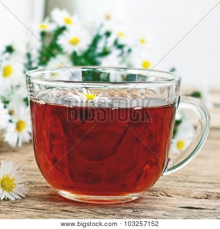 Black Tea In A Glass Cup And Chamomile Flowers