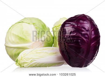 Fresh green, red, and Chinese cabbage vegetables on white background