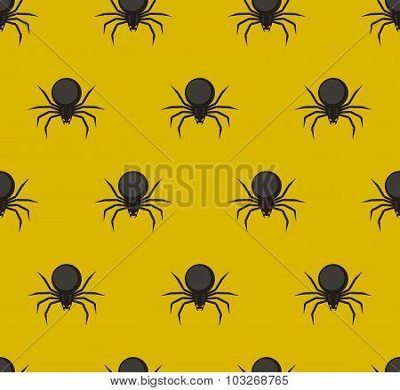 Spiders pattern.