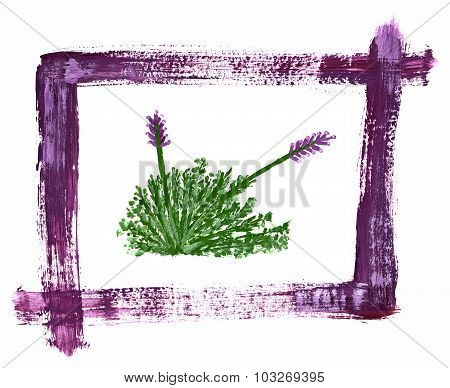 Lavender Bush Painted With Watercolors Framed By Watercolor Strokes