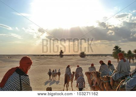 Tourists On Camel In Sunlight