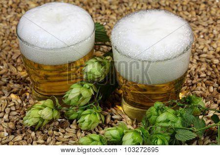 Beer, Hops And Malt