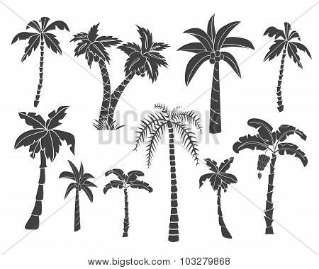 Silhouettes Of Hand Drawn Palms Trees.