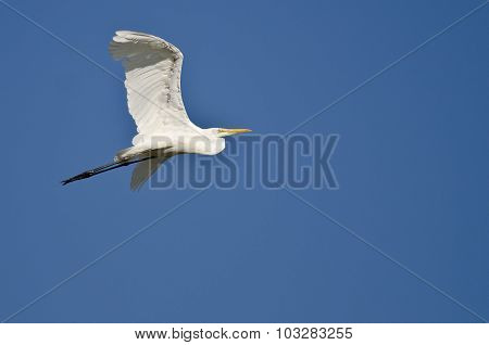 Great Egret Flying In A Blue Sky
