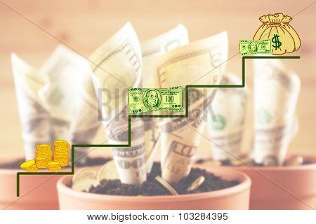 Money concept. Growing money in flowerpots