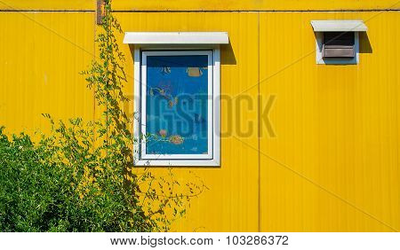 Colorful Cargo Container Used As Housing