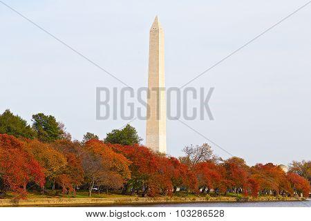 Wasington Monument in autumn.