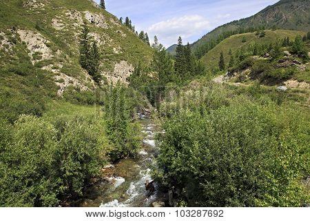 Beautiful views of mountain river Ai Gulak.