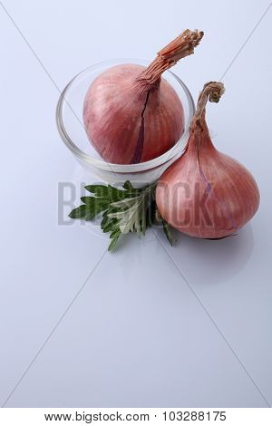 Mugwort Herbal and onion