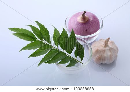 onion,garlic  and curry leaves on the white background