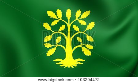 Flag Of Vest-agder County, Norway.