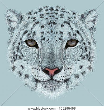 Illustrative Portrait of Snow Leopard