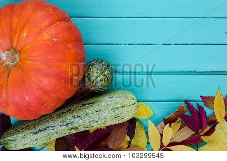 Pumpkin and marrows with autumn leaves
