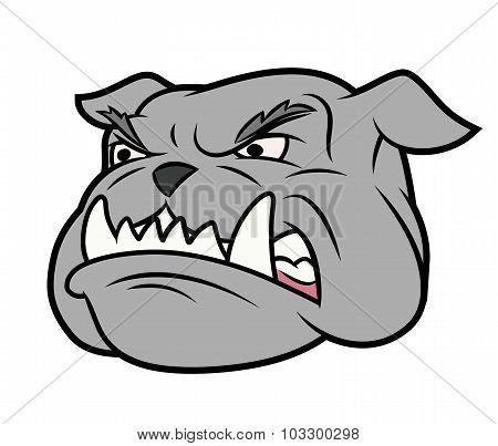 Aggressive bulldog