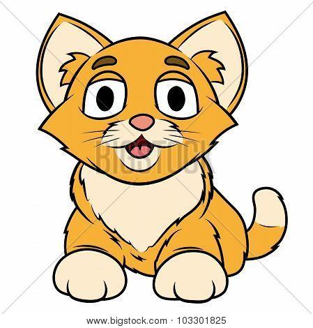 Smiling little kitten