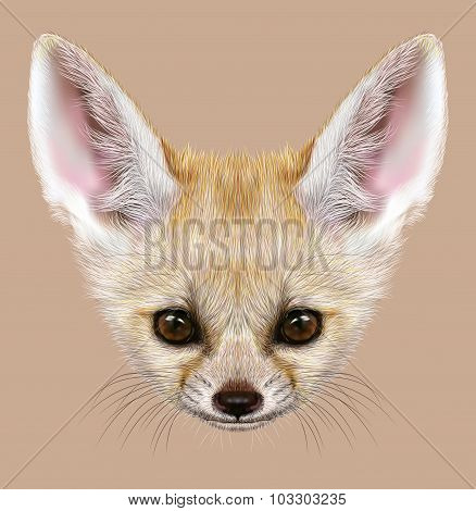 Illustrative Portrait of Fennec Fox