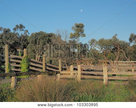 Moon over a desolate cattle loading ramp