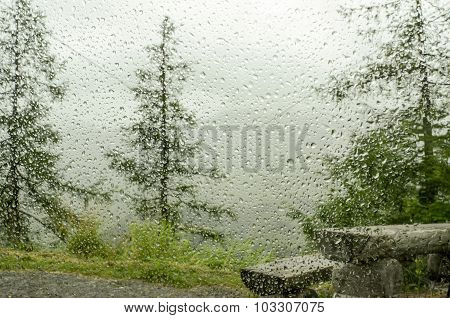 raindrops on car window in forest and  bench